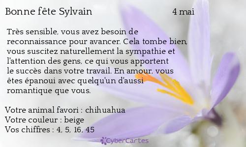 Carte Virtuelle Bonne Fete Sylvain.Carte Bonne Fete Sylvain 4 Mai